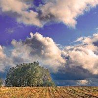 Осенняя пора :: Эркин Ташматов