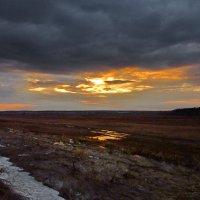 Еще в полях ... :: Валерий Талашов