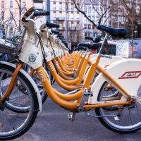 Велосипеды :: Natalya Kopyl