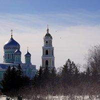 колокольня и Троицкий собор :: Ирина ***