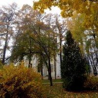 Собор почти не виден :: Peripatetik