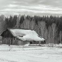 Заброшенный поселок.. :: Сергей Винтовкин
