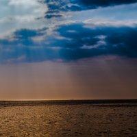 ...лето :: Alex_R Rujinskiy