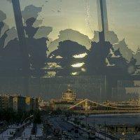 Вид с моста :: Людмила Синицына