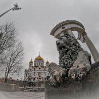 Конечно, вернутся и память, и вера, – уже наступает такая пора :: Ирина Данилова