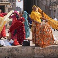 Индия :: galina bronnikova