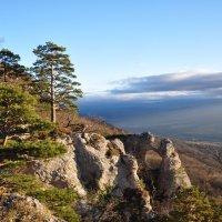 Хребет скалы Уна Коз :: Олеся Енина