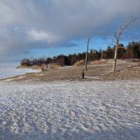 Северодвинск. Весна. Белое море. Берег :: Владимир Шибинский