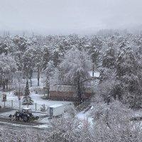 Апрельское утро. Вид из окна. :: Елена Ахромеева