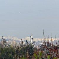 На горизонте :: Наталья (D.Nat@lia) Джикидзе (Берёзина)