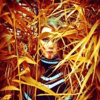 Осень :: Nikki Lashkevich