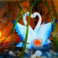 Друзья,учитесь верности у лебедей! Любите так, как любят эти птицы! :: Людмила Богданова (Скачко)