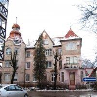 Зеленоградск :: Валентина Дмитровская