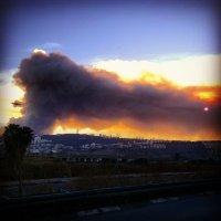 Пожар на Кармеле в 2010... :: Eddy Eduardo