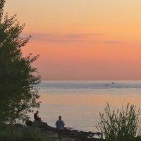 у залива на закате :: Елена