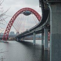 Живописный мост :: Яков Реймер