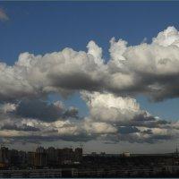Кучевые облака в Девяткино :: Вера