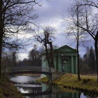 В парке :: Наталья Левина