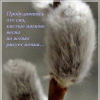 Пробудившись ото сна… :: Нина Корешкова
