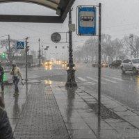 Весенний  каприз погоды :: Valeriy Piterskiy