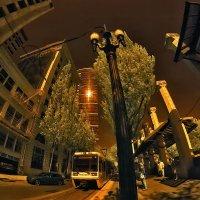 Portland :: АндрЭо ПапандрЭо