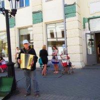 А я играю на гармошке... :: Владимир Ростовский