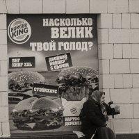 Голод не тётка :: Андрей Михайлин