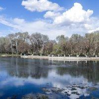 Зеркальный пруд :: Yana Fizazi