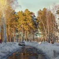 Весенняя распутица :: Дмитрий Конев
