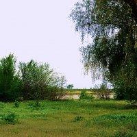 Весна на Длну :: Владимир Болдырев