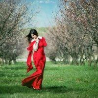 Весна 2015.... :: Мисак Каладжян