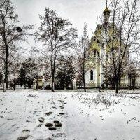 В холодное время жизни.. :: Ирина Сивовол