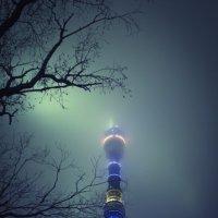 Башня :: Алексей Зайцев