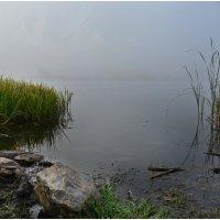 туманное озерцо :: Татьяна Малинина