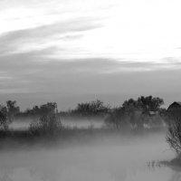 Утро :: Михаил Гажур