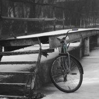 Зима :: Денис Красильников
