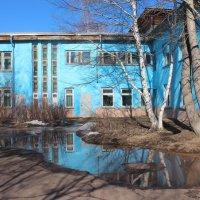 В окружении талых вод. :: Наталья Юрова