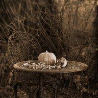 В заброшенном саду... :: Ирина Елагина