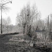 Заброшеный парк :: Виктория Большагина