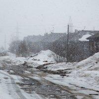 А где весна? :: Sergey Apinis