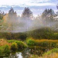Осенний туман :: Руслан Веселов