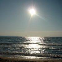 Море, солнце. :: Вера Щукина