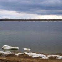 Волга в апреле. :: Анатолий
