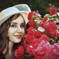 Эти алые розы :: Olga Zhukova
