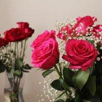 цветы :: Лала Баймукашева