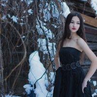 Зимняя краса :: Аида Абрегова