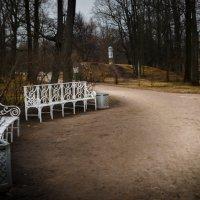 Парк :: Екатерина Климова