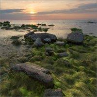 Вечер на заливе. :: Юрий