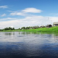 Река Кема. Деревня Нефёдово. Вологодская область. :: Елена Швецова