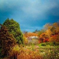 Осень. :: SergeuBerg